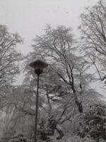 仙台は雪….jpg