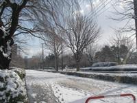 雪!.JPG