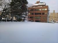 13.01.15 真っ白な駐車場.jpg