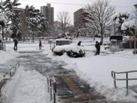 13.01.15 雪かき.jpg