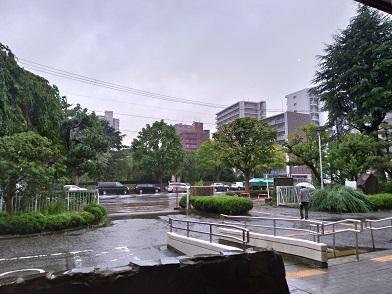 18.08.09 雨もよう.jpg
