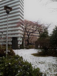 19.03.31 雪景色.jpg